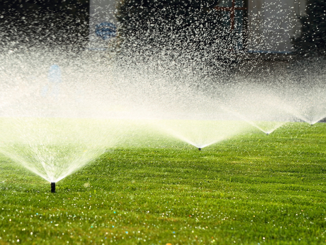Keep Your Lawn Healthy With Routine Watering