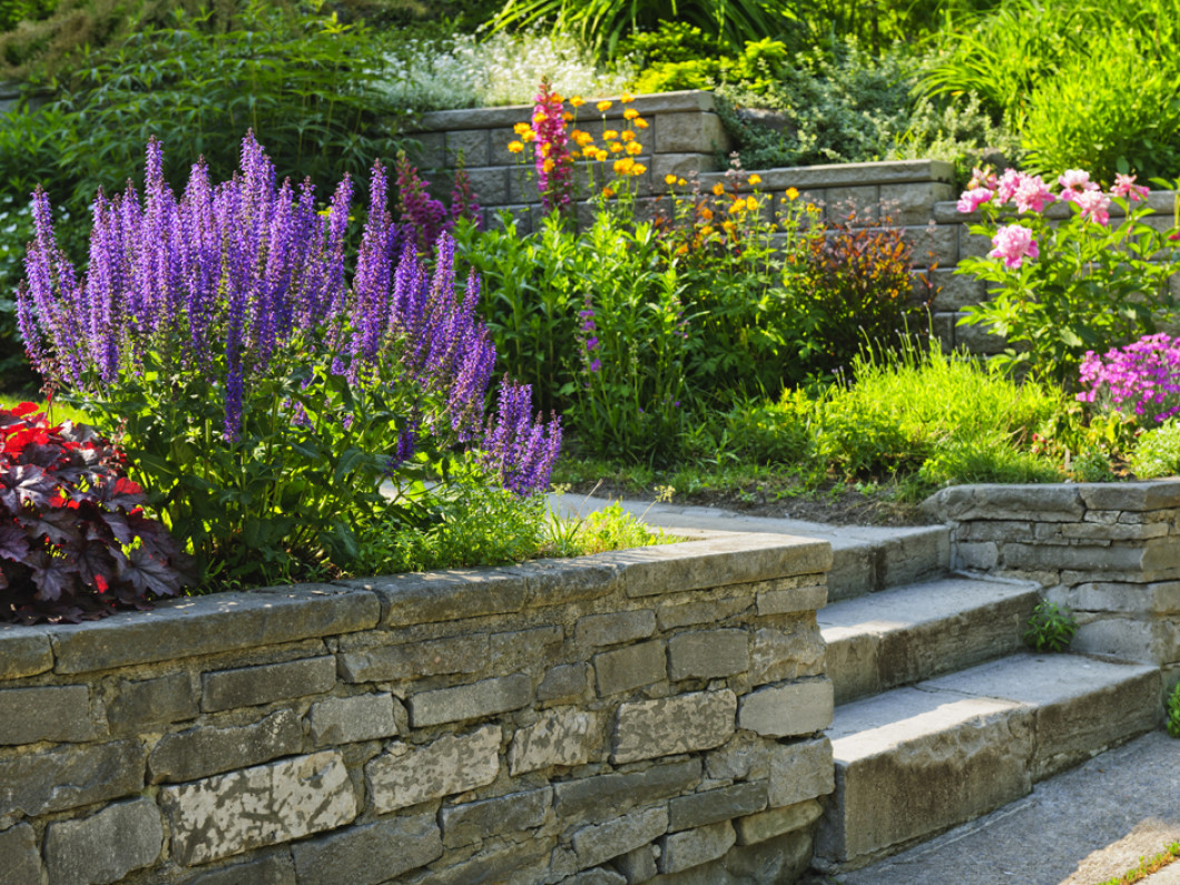 Paving the Way for Your New Landscape